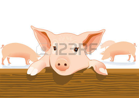 133 Pigsty Stock Vector Illustration And Royalty Free Pigsty Clipart.