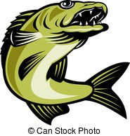 Pike Clipart and Stock Illustrations. 2,039 Pike vector EPS.