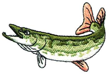 Northern pike fish clipart.