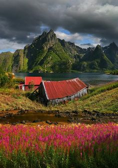 Lofoten, Norway and Islands on Pinterest.