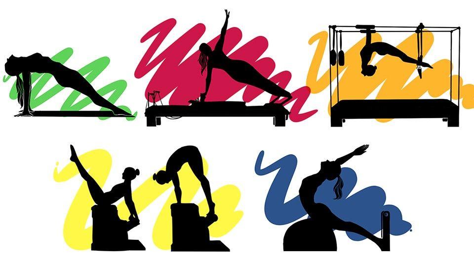 Image result for pilates ladder barrel clipart.