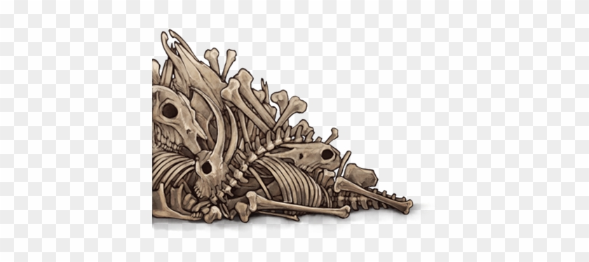 Pile Of Bones Png, Transparent Png.