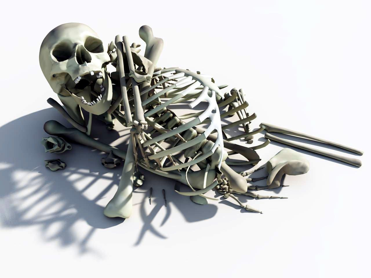Pile Of Bones Png images collection for free download.