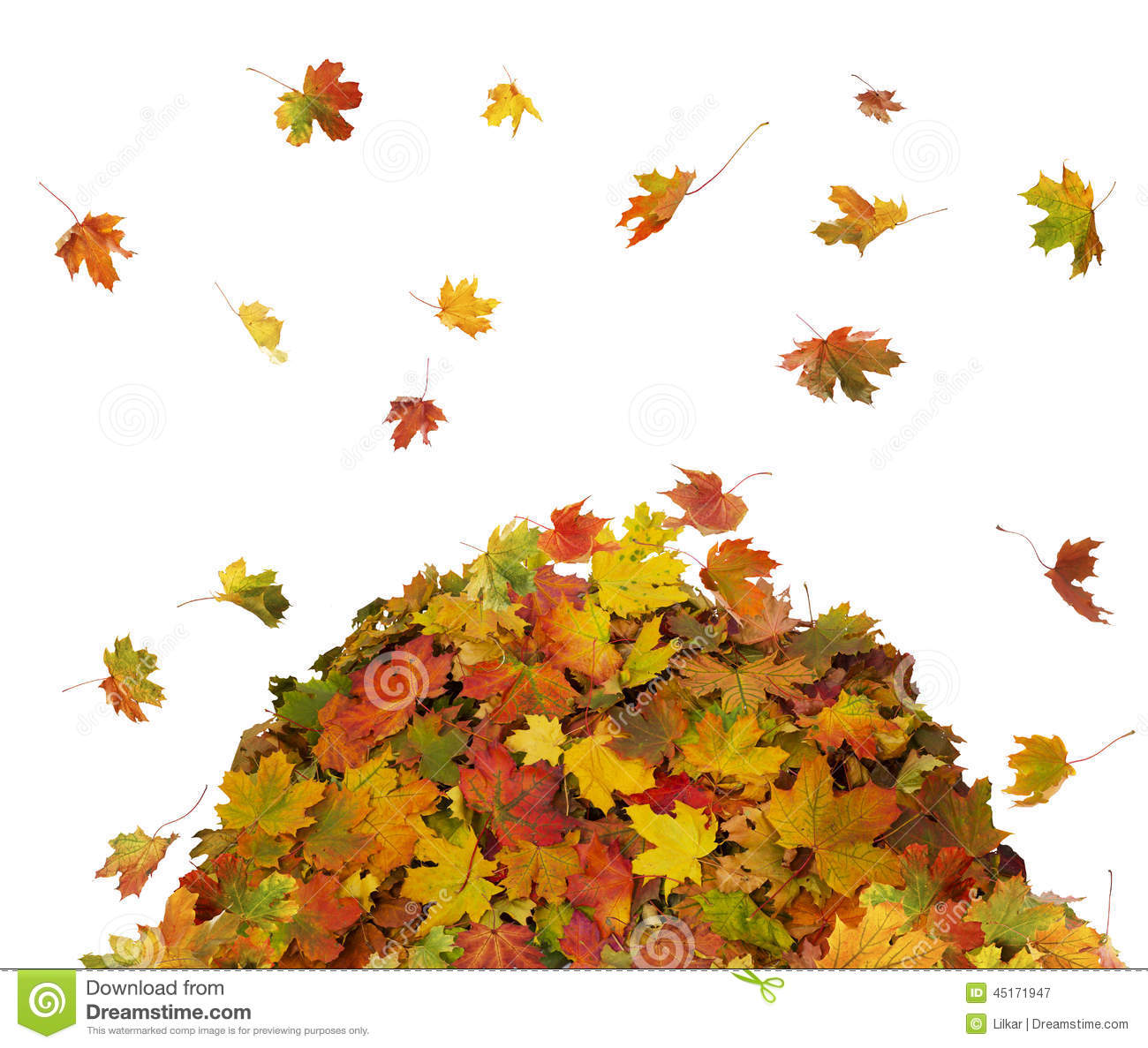 Pile Of Fall Leaves Stock Photo Image: 45171947.