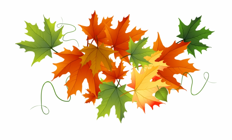 Falling Leaves Clipart Png.