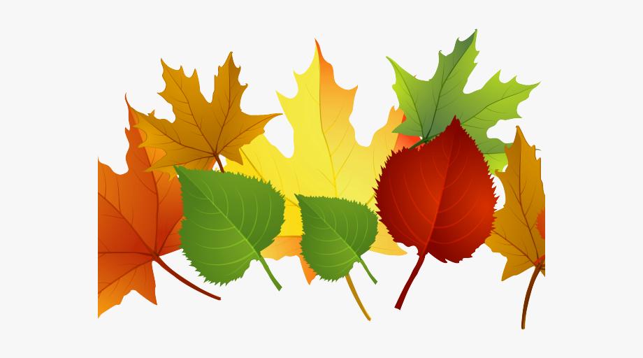 Autumn Leaves Clipart Clip Art Fall.