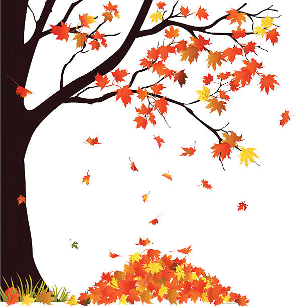 Pile of leaves clipart 3 » Clipart Station.