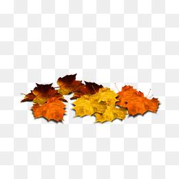 Maple Leaf Deciduous Decorative Pattern, #90721.