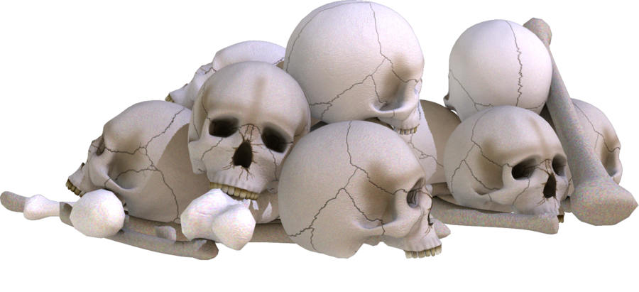 Download Pile of Skulls PNG Image.
