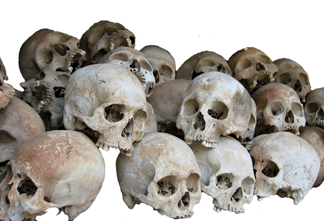 Download Pile of Skulls Transparent PNG 323.