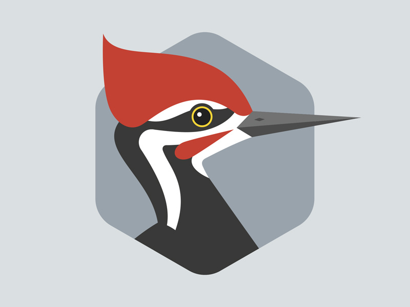 Pileated Woodpecker by Brett Stiles on Dribbble.
