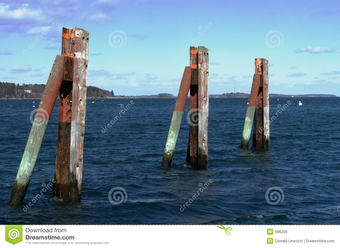Dock pilings clipart. Pirate Diary.