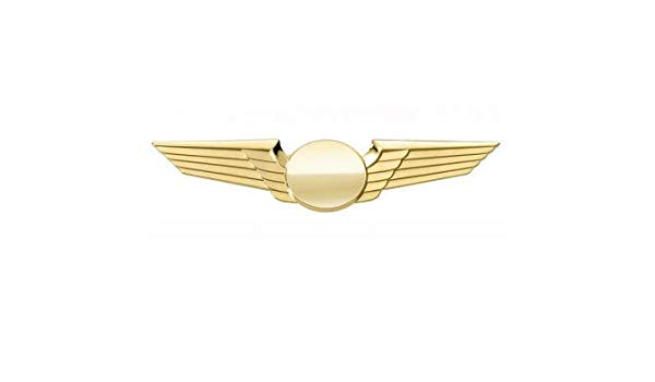 The Pilot Professionals Pilot Gold and Silver Plated Wings.