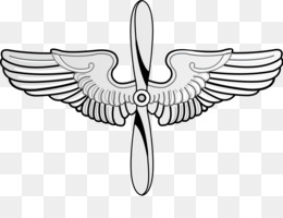 Pilot Wings Cliparts PNG and Pilot Wings Cliparts.