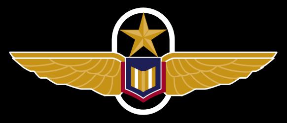 Pilot wings png 4 » PNG Image.