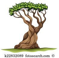 Pinaceae Clip Art Royalty Free. 23 pinaceae clipart vector EPS.