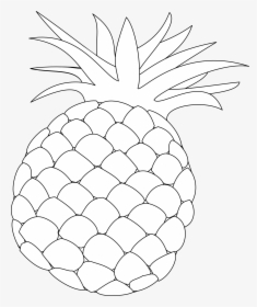 Drawing Pineapple Pine Apple Free Pineapple Clipart.