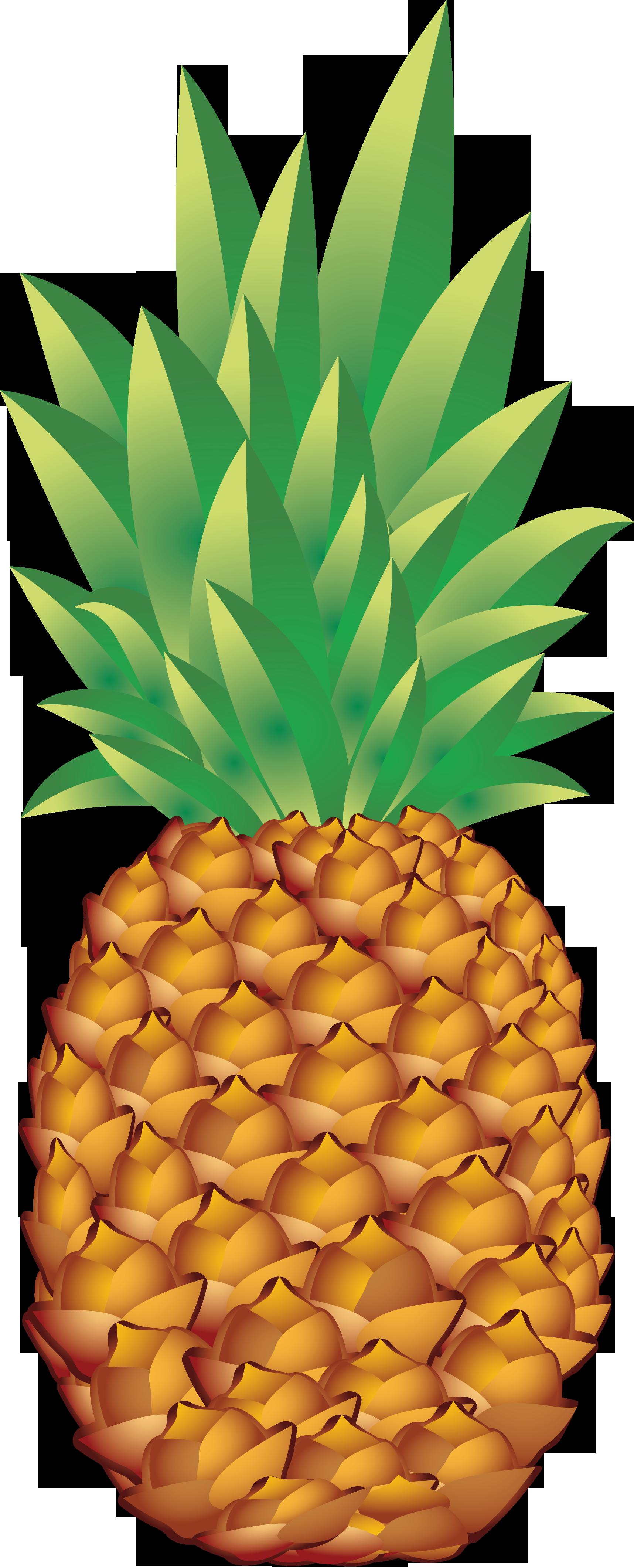 tumblr pineapple.