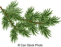Pine branch Illustrations and Clip Art. 14,619 Pine branch royalty.