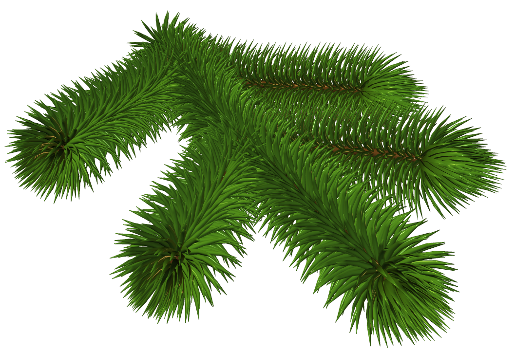 Transparent Pine Branch 3D Clipart.