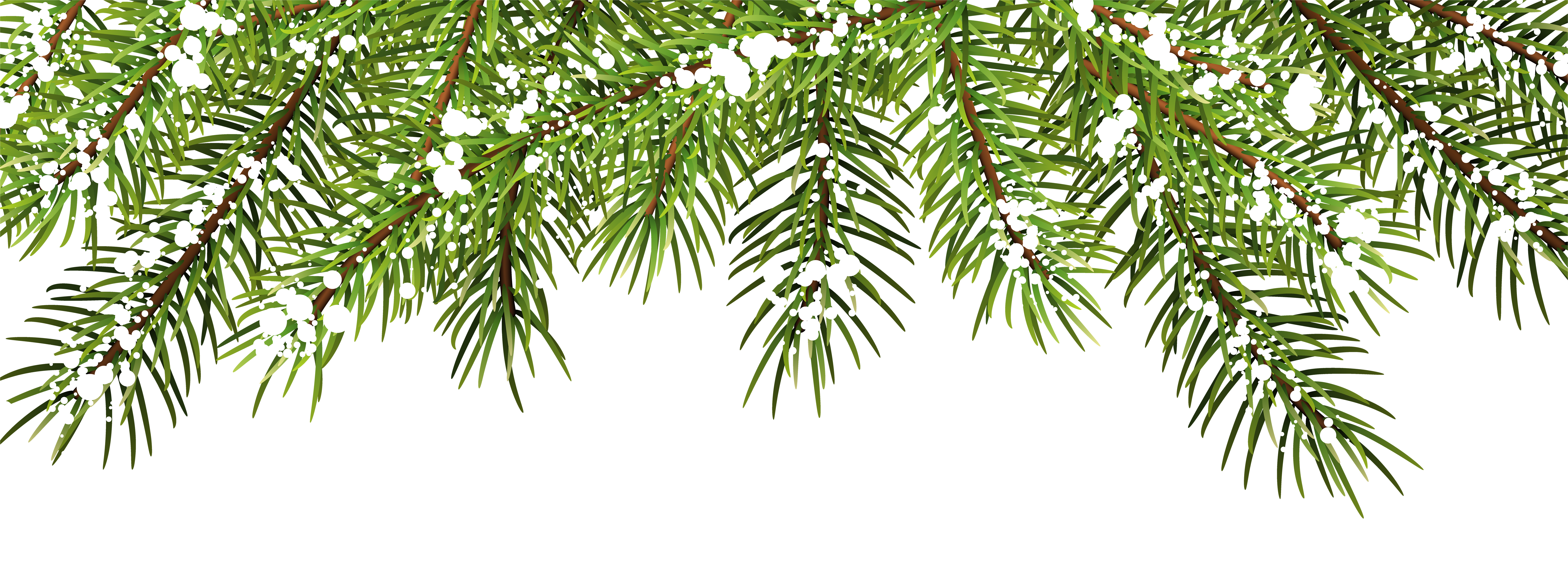 Christmas Pine Branches Decor PNG Clip Art.
