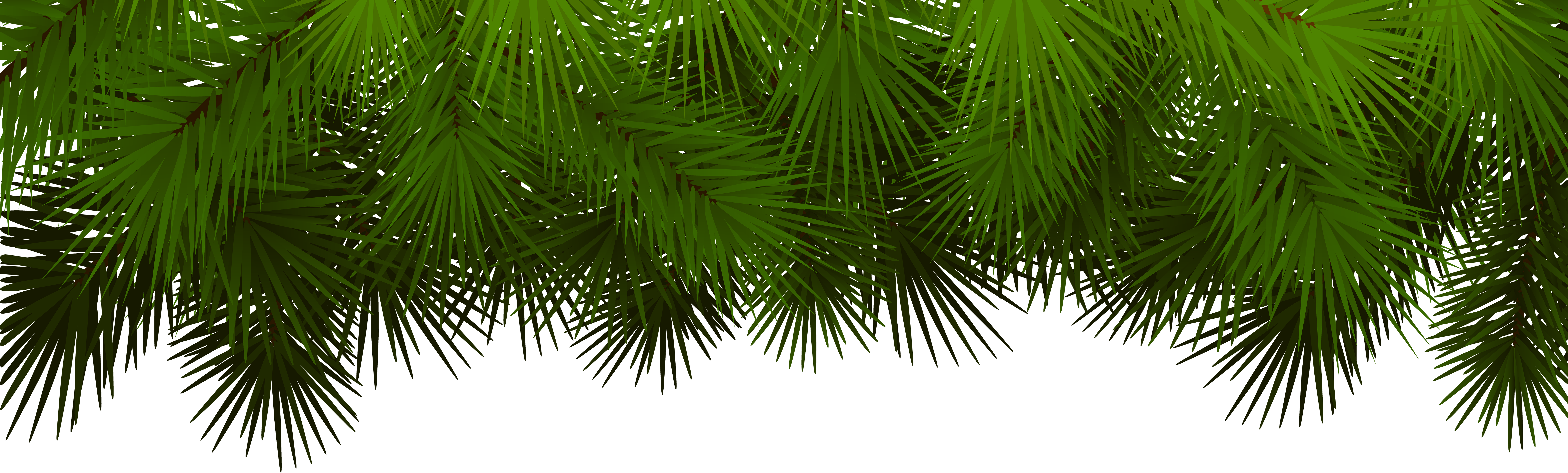 HD Pine Branches For Decoration.