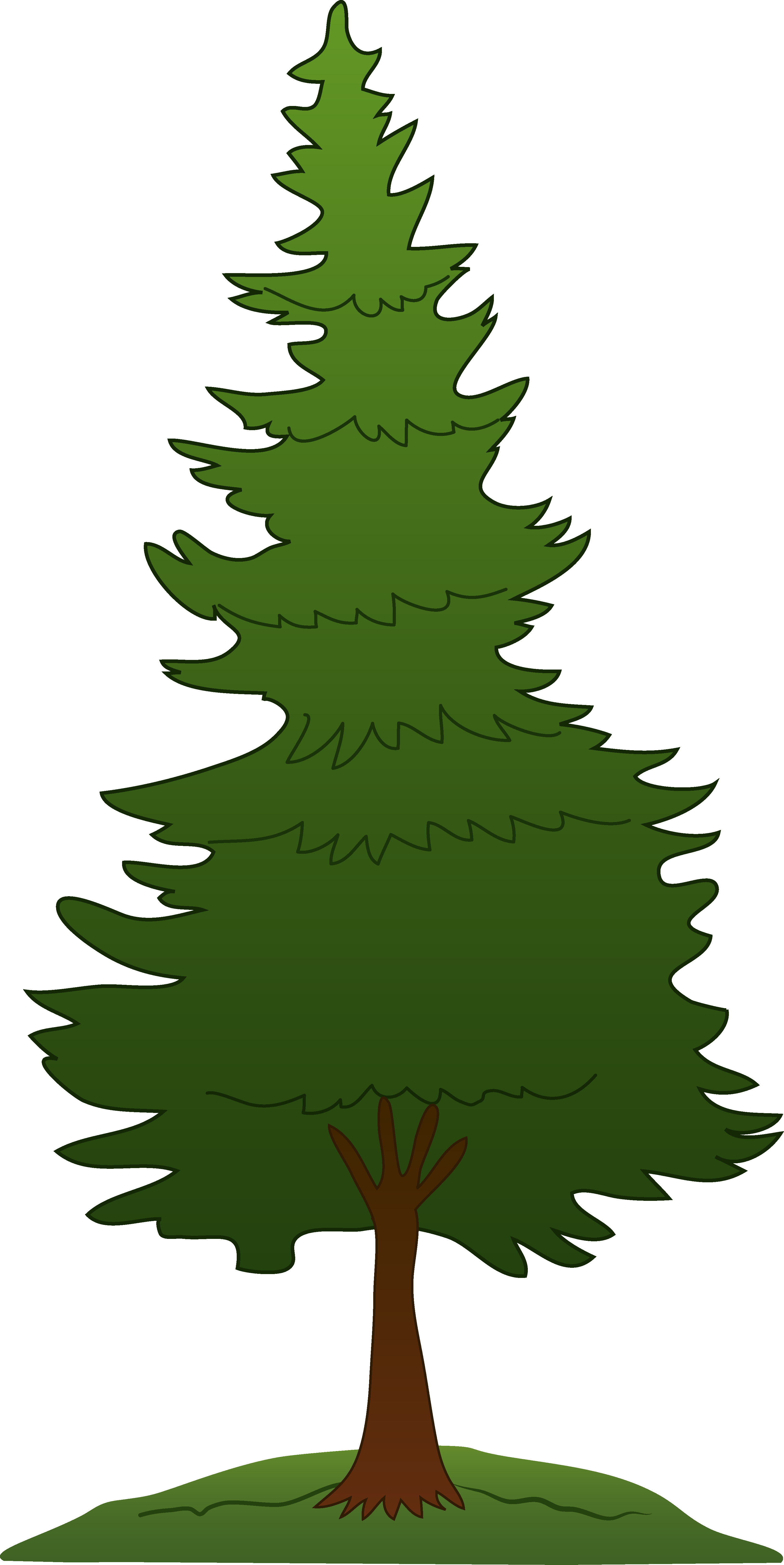 Pine tree clipart free images.