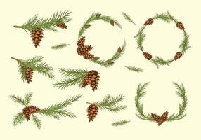 Pine Cone Free Vector Art.