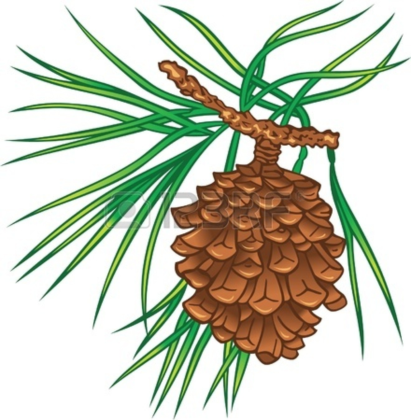 Clip Art Pine Cone Panda Free Images clipart free image.