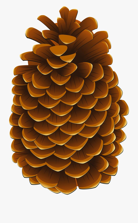 Clip Art Clipart Pinecone.