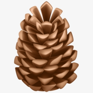 PNG Pine Cone Cliparts & Cartoons Free Download.