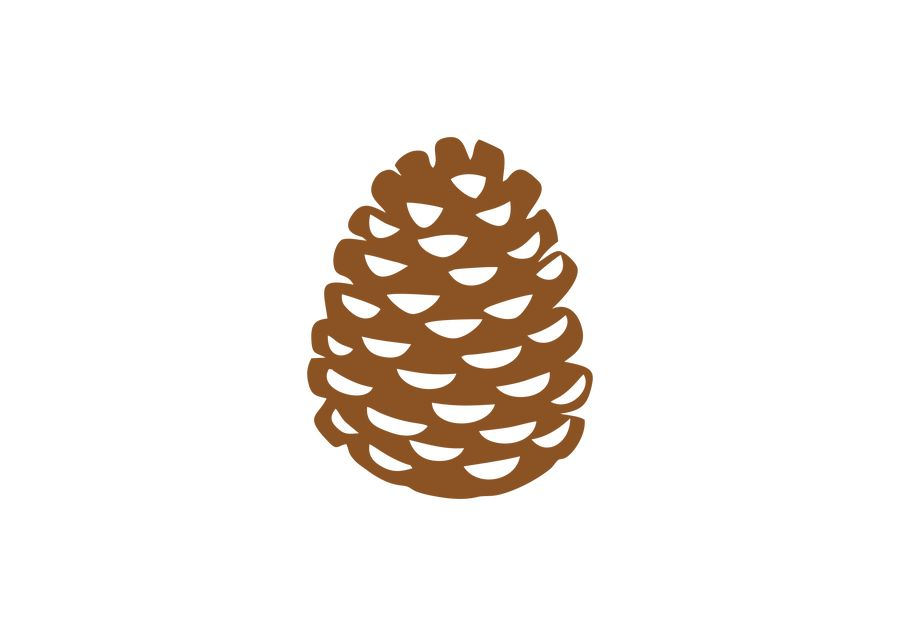 Entry #23 by khanma886 for Draw a pine cone (vector.