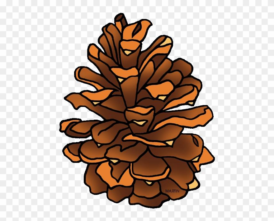 Clipart Pine Cone.