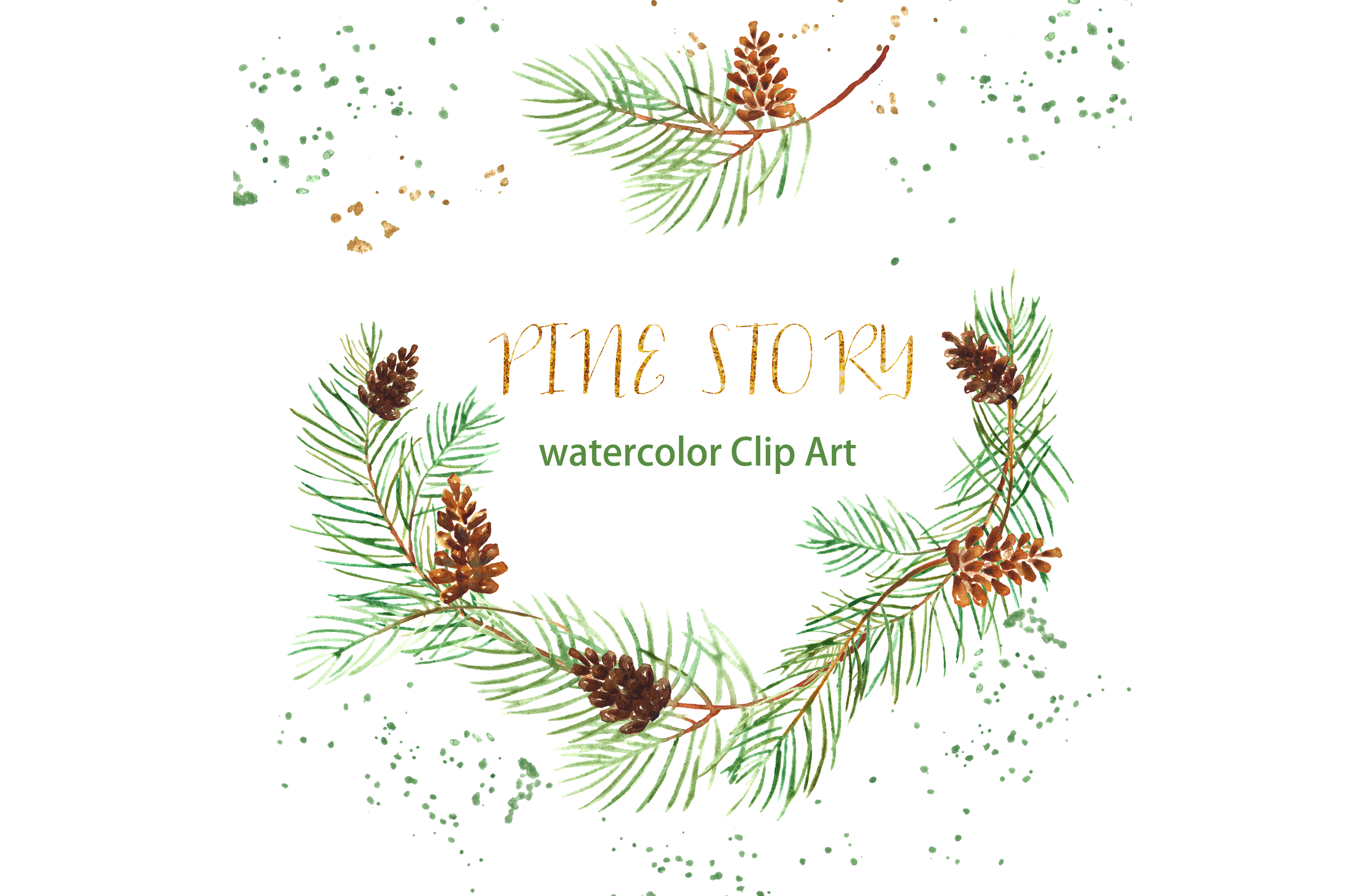 Pine branches. Watercolour clipart.