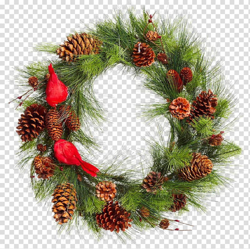 Real Christmas pinecone grass ring transparent background.