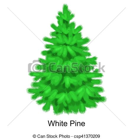 Vector Clipart of Christmas vector tree like white pine for New.