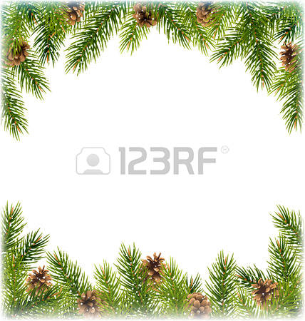 12,295 Conifer Stock Vector Illustration And Royalty Free Conifer.