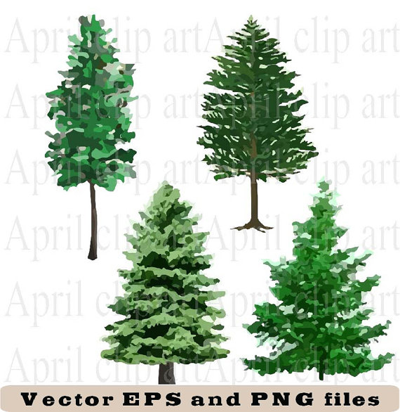 4 Pine Tree EPS and PNG Vector files Clip art graphics.