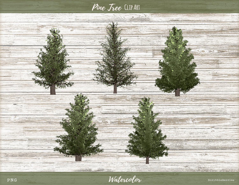 Watercolor Pine Tree Clip Art Tree Clip Art by ScribbleBerries.
