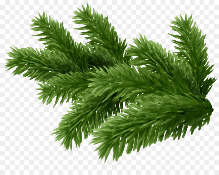 New Year Tree Branch clipart.