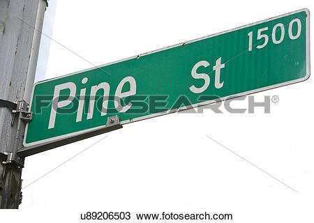 Stock Photo of Pine Street sign, Seattle u89206503.