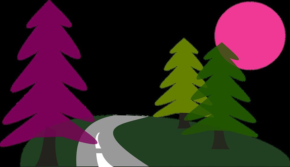 Free vector graphic: Sun, Road, Trees, Travel, Pine.