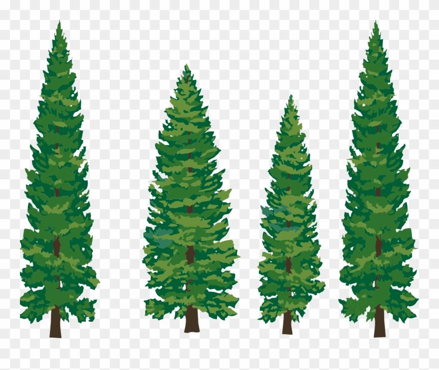 Clip Art Pine Tree.