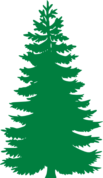 Pine Tree Clip Art at Clker.com.