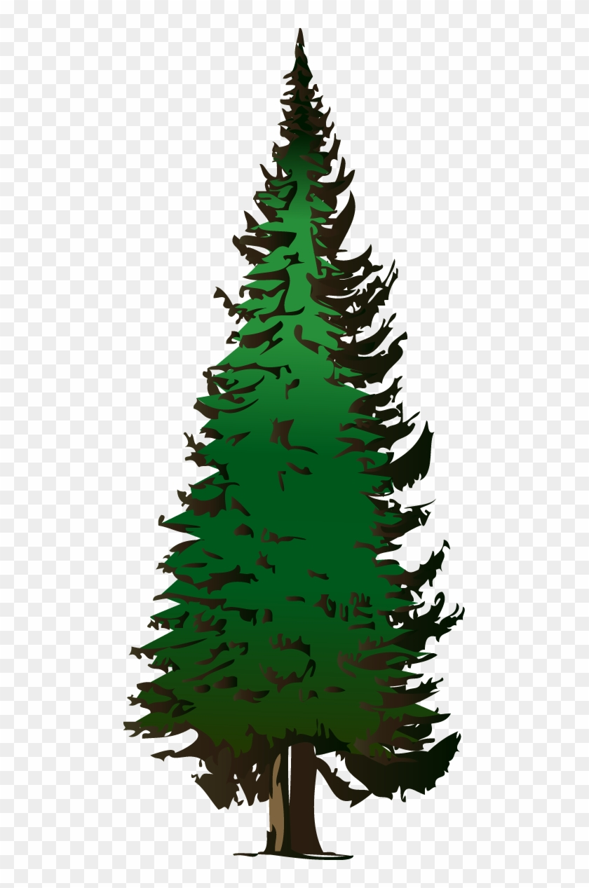 Pine Tree Vector Free Download.