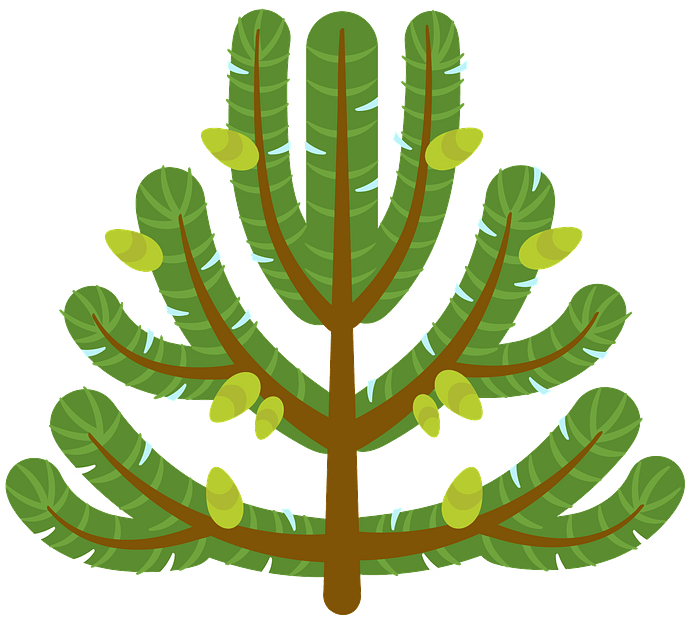 Pine tree clipart. Free download..