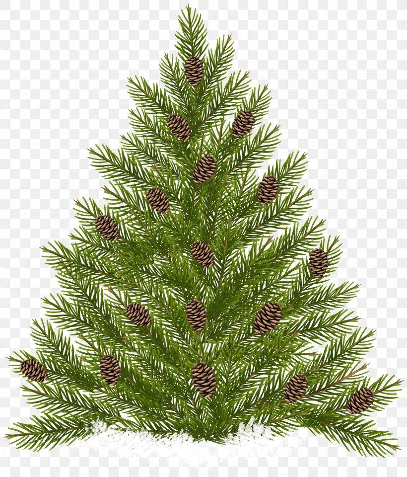 Raster Graphics, PNG, 3414x4000px, Pine, Christmas.
