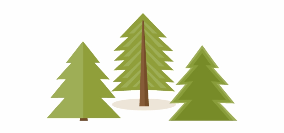 Clip Free Library Pine Clipart Animated Free On.