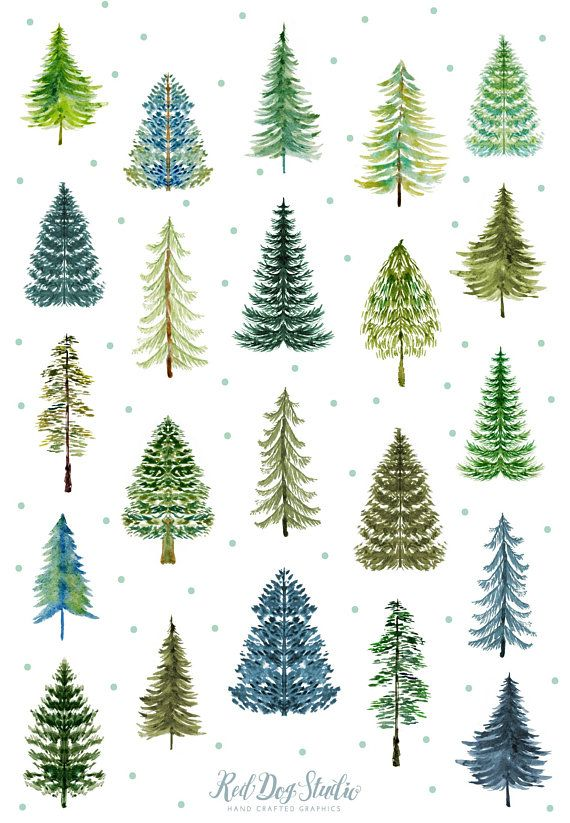 Watercolor Pine Tree Forest Clipart, Watercolor Tree Clipart.