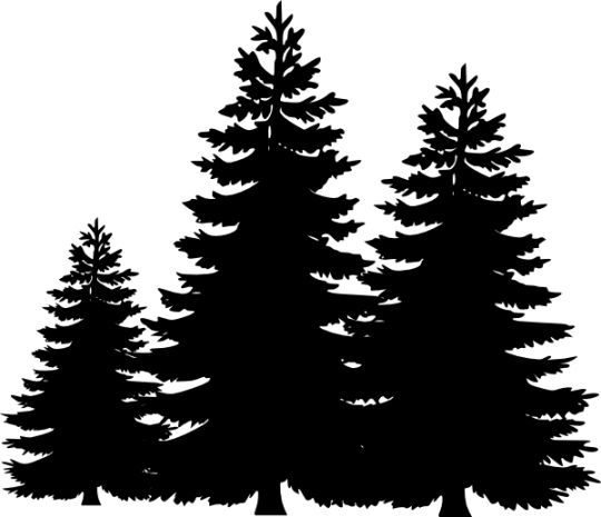 8172 Tree Silhouette free clipart.